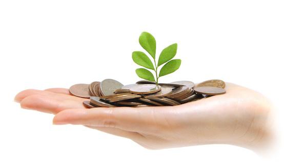 Uitstekende hand vol geld waarin een klein plantje groeit